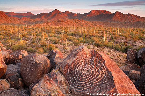 Stephen g kobourov things to do in and around tucson az for Landscaping rocks yuma az